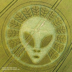 Zeta Grey Being encoded in crop circle